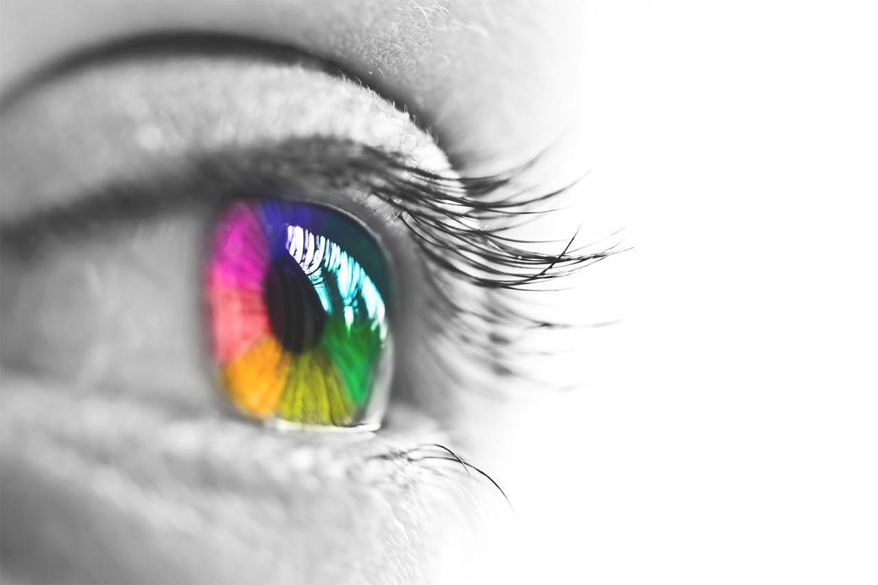 img articolo 2 - visioni colorate